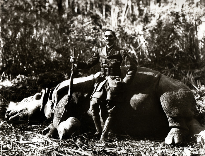 Indian one horned rhinoceros. Nepal circa 1905