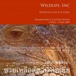 W1 Exhibition Book 1